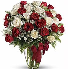 25 white and red roses