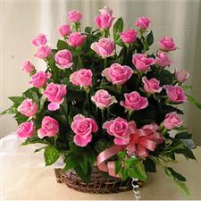 Basket with 45 roses