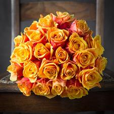 Just 25 beautiful orange roses