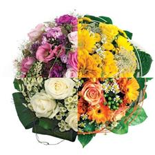 8 March Florist Choice